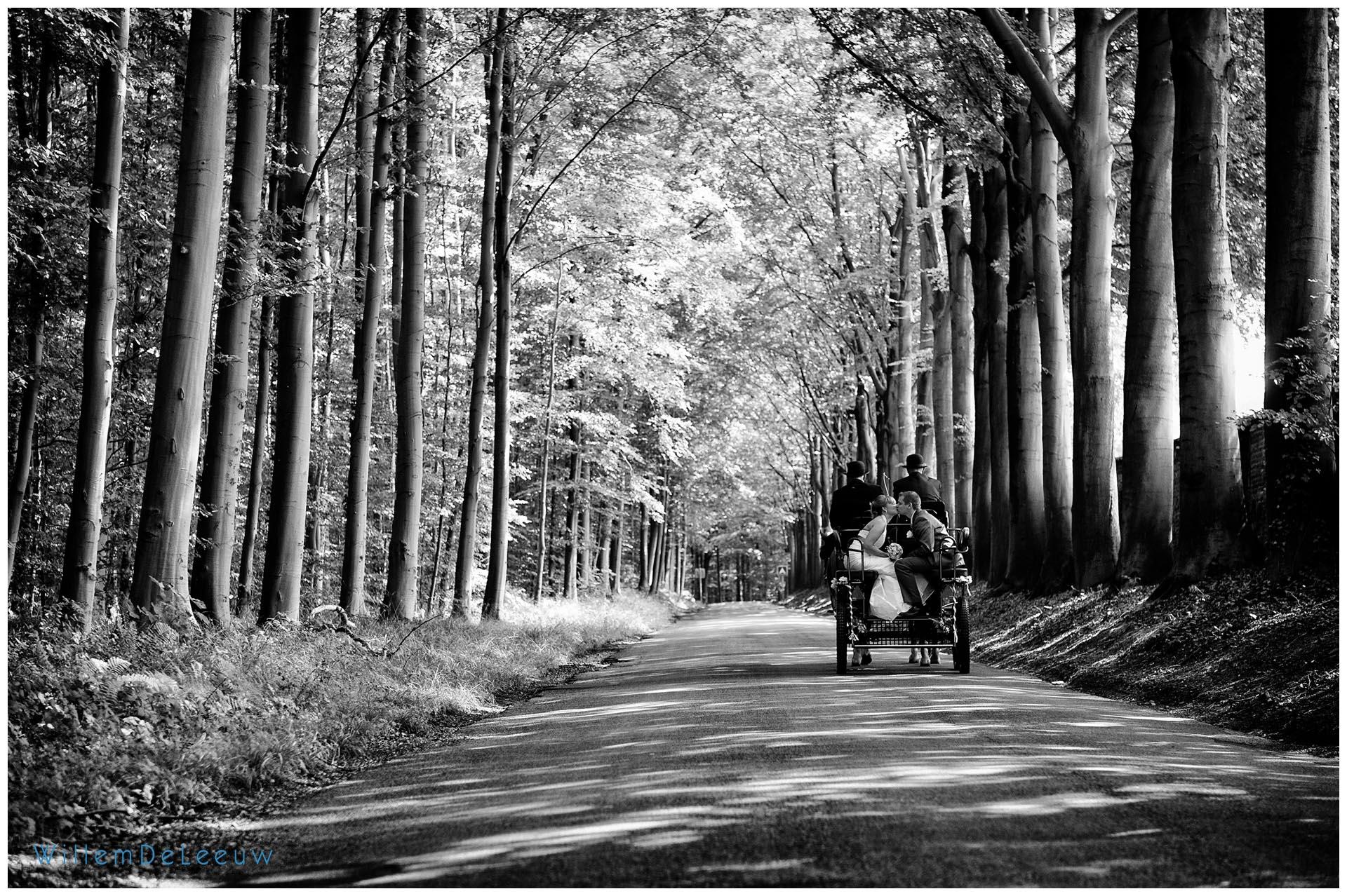 paardenkar trouw Willem De Leeuw
